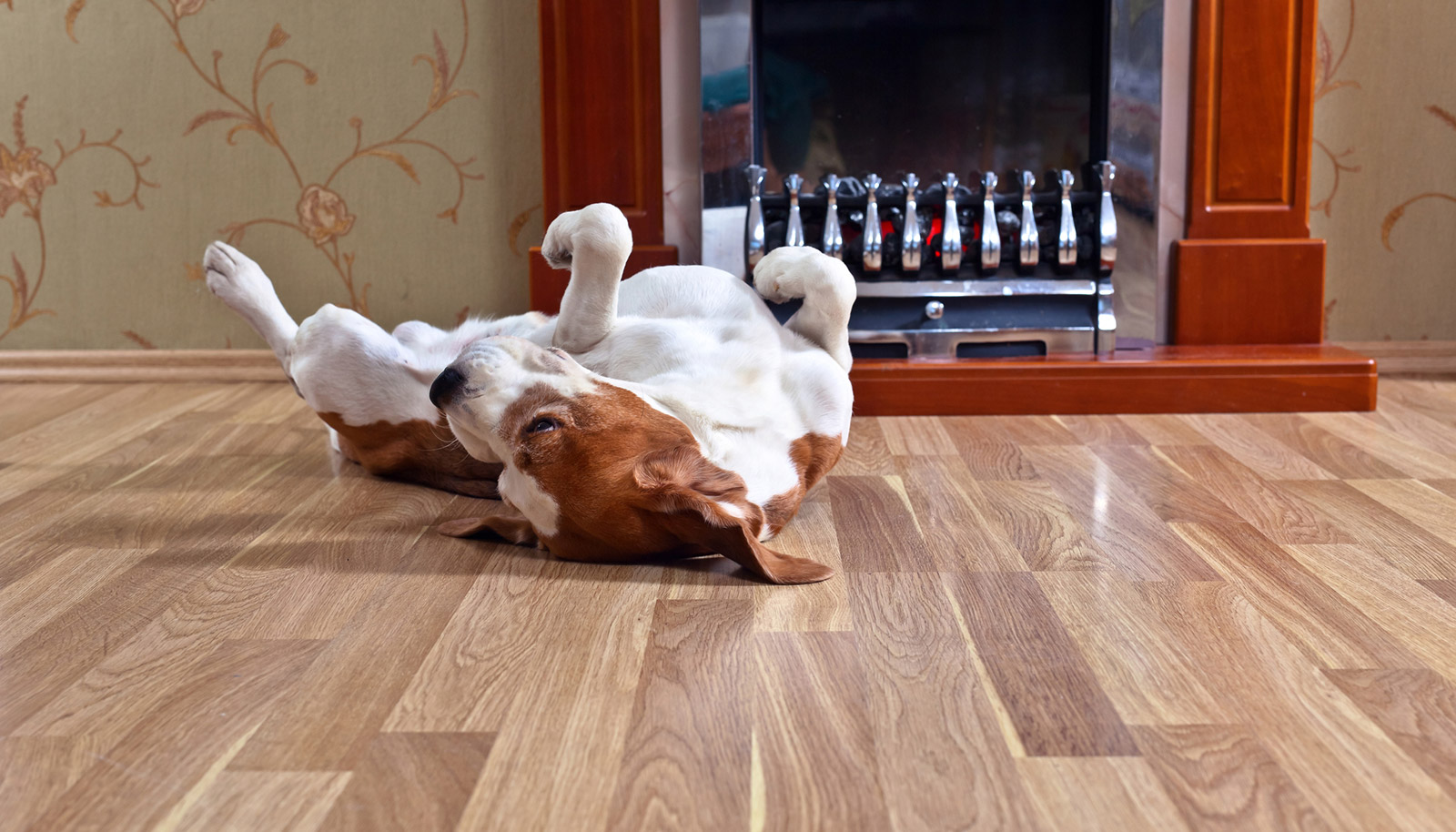 luxury vinyl flooring warranties